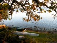 Caygua, NY - Cayuga Lake in autumn.